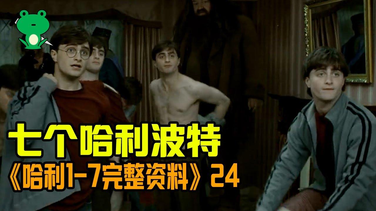【细品哈利24】《哈学》深度解析 | 波特转移之战