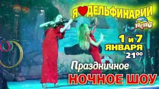 Новогоднее Ночное Шоу Минского  дельфинария