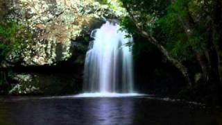 Kondalilla (Stephen Leek) harmonia ensemble