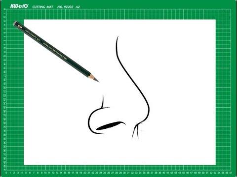 """CURSO de dibujo a lápiz Cap. 12 """"La nariz de perfil"""" - YouTube"""
