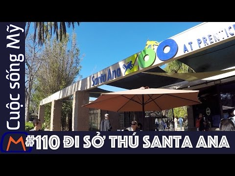 Cuộc sống Mỹ - Vlog 110: Đi sở thú Santa Ana