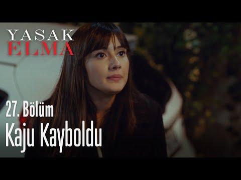 Kaju kaybolunca Zeynep - Yasak Elma 27. Bölüm
