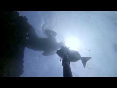 Ilha de Luanda Pesca Sub OK 2