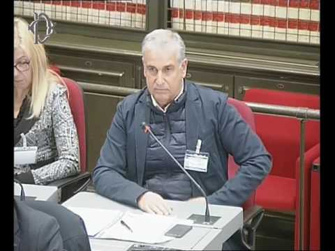 Audizione ANIP Flavio Tuzi Commissioni riunite Affari costituzionali e Difesa.