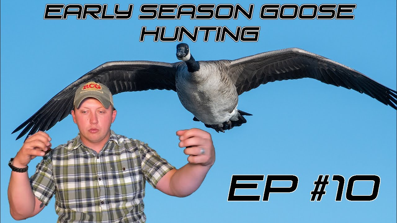 EARLY SEASON GOOSE HUNTING! - Field Facts With Forrest Ep #10