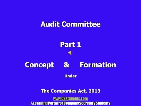 Audit Committee companies act