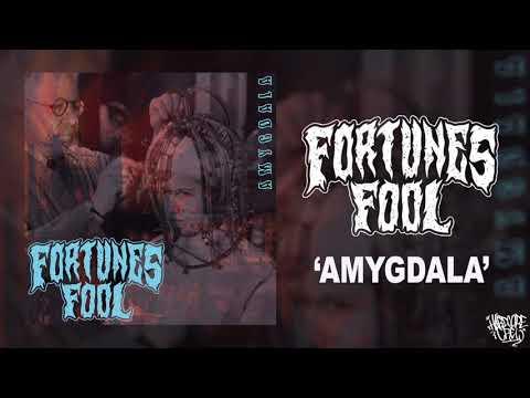 FORTUNE'S FOOL 'Amygdala' [HQ]
