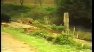 Repeat youtube video Gornje Kricke opstina Novska - nekada