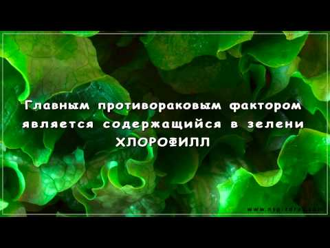 Жидкий Хлорофилл (Liqiud Chlorophyll) компании NSP