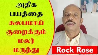 அதிக பயத்தை சுலபமாய் குறைக்கும் ராக் ரோஸ் | Yogam | யோகம்