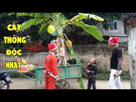Làm Cây Thông Noen Có Một Không Hai Tại Việt Nam Mừng Giáng Sinh 2019 - Mao Đệ Phát Quà Mỏi Tay