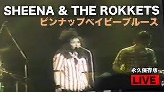 SHEENA &THE ROKKETS LIVE TV PIN UP BABY BLUES 80年代