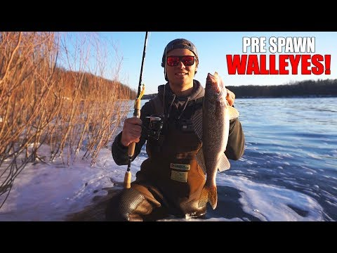Spring Walleye Fishing Under Dam! (Central Wisconsin)