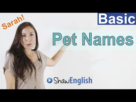 Pet Names in English