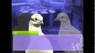 Roscuro Plays Hatoful Boyfriend: Part 86 ~ Bad Boys Love ~ END ~ All Good Things Must Come to an End