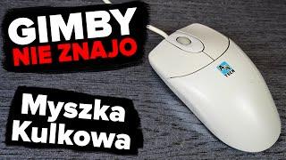 Myszka Kulkowa | GIMBY NIE ZNAJO #38