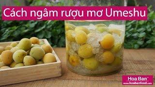 Cách ngâm rượu Mơ Umeshu Nhật Bản