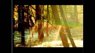 Childish Gambino L.E.S. FULL SONG AND LYRICS.mp3