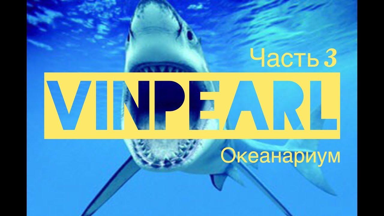 Vinpearl land   Океанариум на острове Винперл   Подводный мир Вьетнама   Вьетнамский Диснейленд