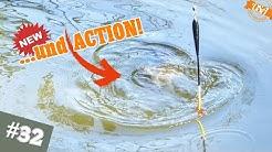 Absoluter Fisch HOTSPOT! Dieser Waldsee macht den OSA HAPPY! Mission Friedfisch Angeln
