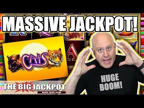 MASSIVE WIN! 🙀Cats Slot Machine 🙀Bonus Round! | The Big Jackpot