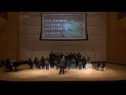 白馬王子音樂劇---女人花