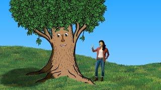 Ginalina - Parts of a Tree | Music Video