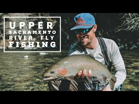 Upper Sacramento River Fly Fishing-Spring On The Upper Sac With AC Fly Fishing