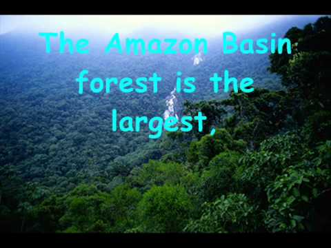 "amazon rainforest deforestation case study Oil development, deforestation in a well-known study of land-use change in petroleum-producing amazon rainforest in ecuador,"" american indian law."