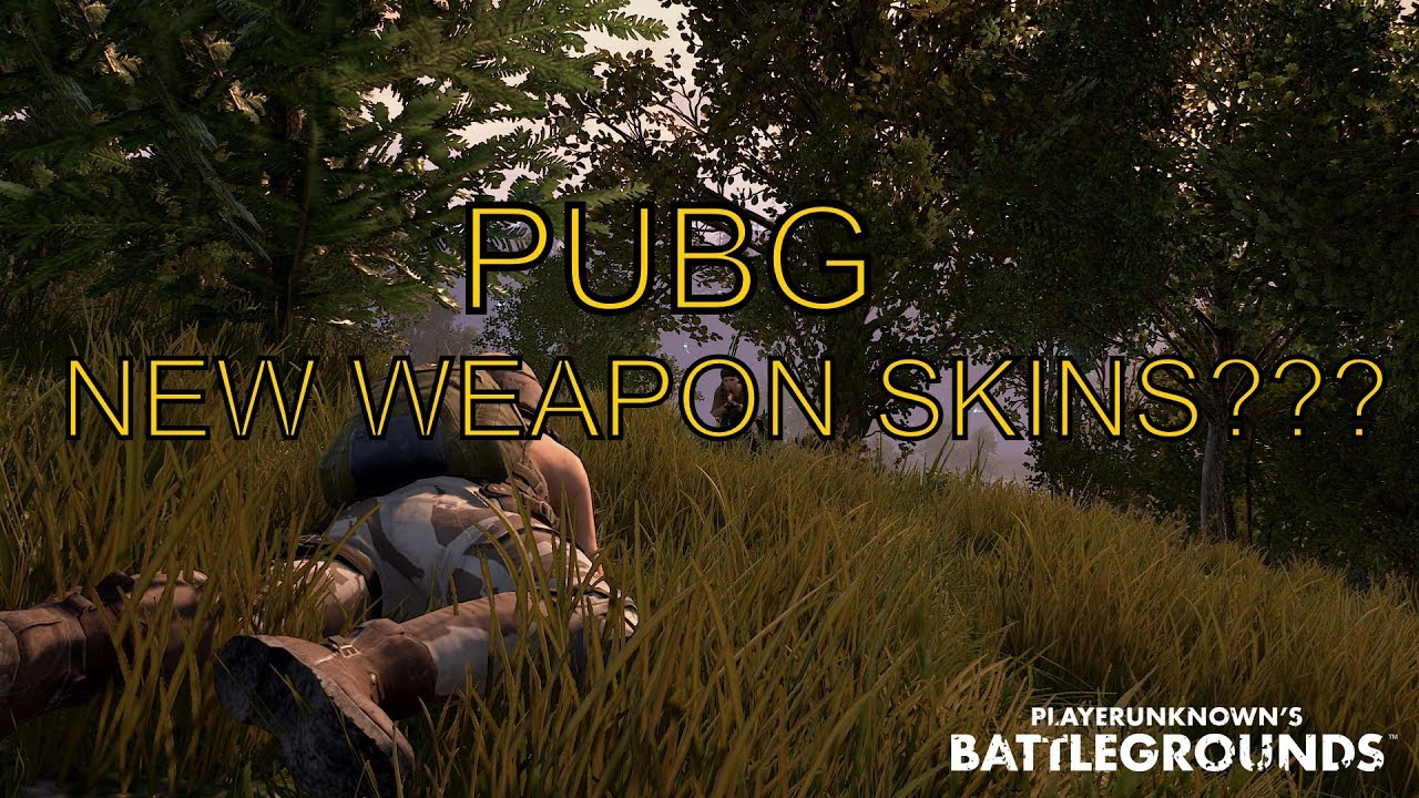 Pubg Weapon Master Wallpaper: SHOULD PUBG WEAPON SKINS BE RELEASED???