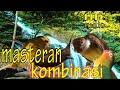 Masteran Kombinasi Cucak Ijo Masteran Termewah  Mp3 - Mp4 Download