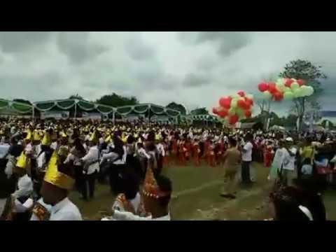 Tari Bedana Massal di Festival Way Kambas 2017
