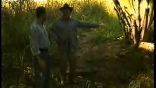 Globo Rural Correntina-BA