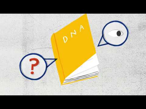 How to read DNA