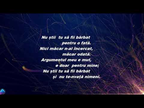 Irina Rimes - Nu Stii Tu Sa Fii Barbat Versuri/Lyrics