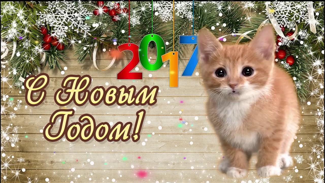 Поздравление с новым годом от котика фото 107