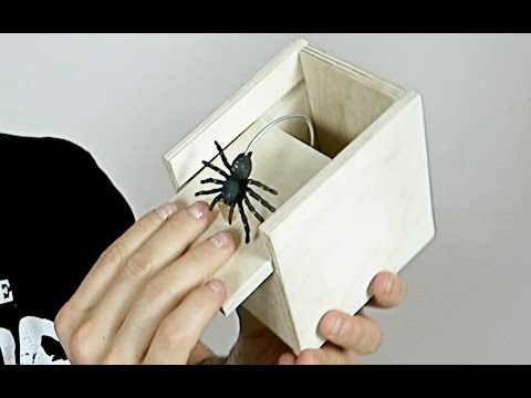 SPIDER SCARE PRANK!! - HOW TO PRANKS
