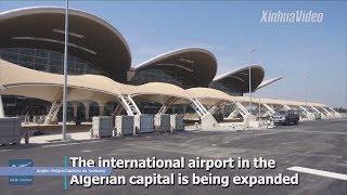 Китайцы возводят самый крупный аэропорт в Алжире