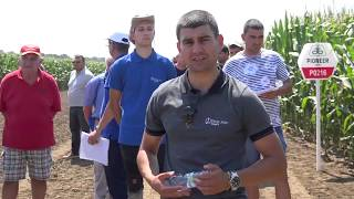Торовете на Тимак Агро - демо опит в Калипетрово