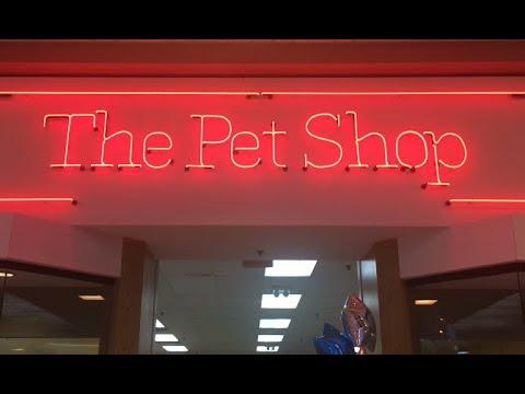 The Pet Shop NO DOGS Laurel Mall Hazleton Pennsylvania 18201