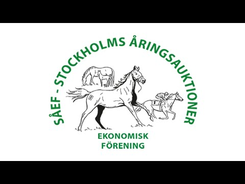 Stockholm Yearling Sale 2020