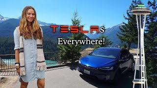 We Rented a Tesla On Vacation!