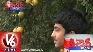 Chintha Chettu  Ki Santhra - Teenmaar News
