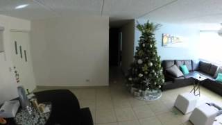 Toypoodle at home alone  Gopro HERO 3+