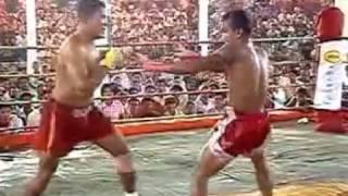 vuclip BRUTAL FIGHT