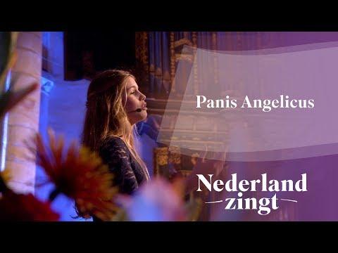 Nederland Zingt: Panis Angelicus