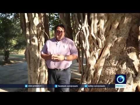 17392 gelände aus Press TV IRAN   Kharg island