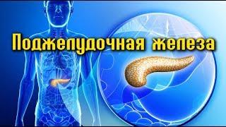 10 ПРОДУКТОВ для здоровья ПОДЖЕЛУДОЧНОЙ ЖЕЛЕЗЫ