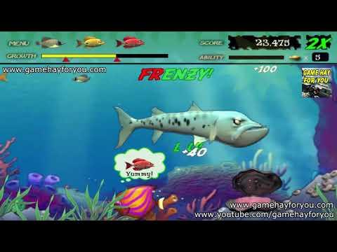 Play Game Feeding Frenzy   Tải Và Chơi Game Ăn Cá - Cá Lớn Nuốt Cá Bé Trên Máy Tính