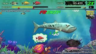 Play game Feeding Frenzy | Tải và chơi game Ăn cá - Cá lớn nuốt cá bé trên máy tính